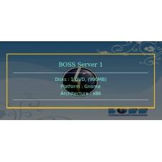 BOSS Server 1