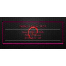 Debian ( Jessie ) 8.6.0 64bit